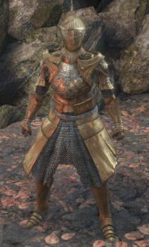 Ds Ringed Knight Hood